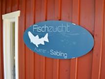 fischzucht_frauenau_galerie10